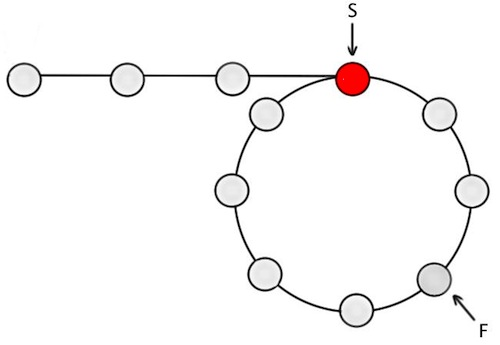 Figure-2: Circular linked list, with S at the start of loop and F m nodes into the loop