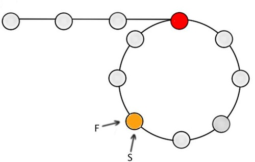 Figure-3: Both F and S meet m nodes from the end of the loop